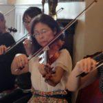 Adult Violinists