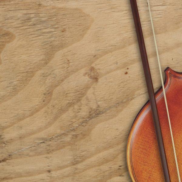 square-violin-crop-wood-bow-body-slice5