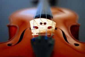 violin-bridge-shape